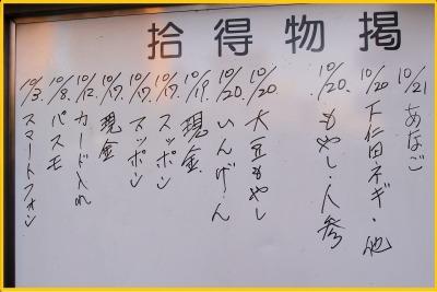 s_hanabi28-10.jpg