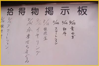 s_hanabi28-5.jpg