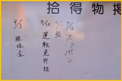s_hanabi28-7.jpg