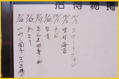 s_hanabi28-8.jpg