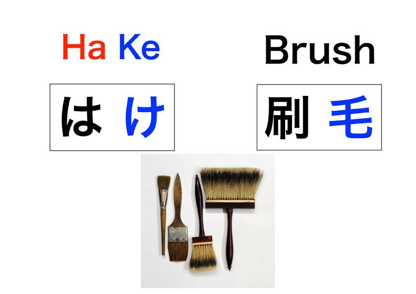 Hake.jpg