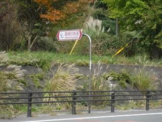 箱根旧街道_3.JPG