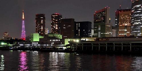 東京タワー ダイヤモンドヴェール「ドリームピンク」tags[東京都]