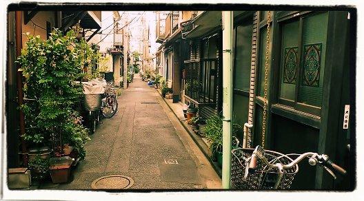 roji5.jpg
