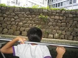 日本橋5.jpg