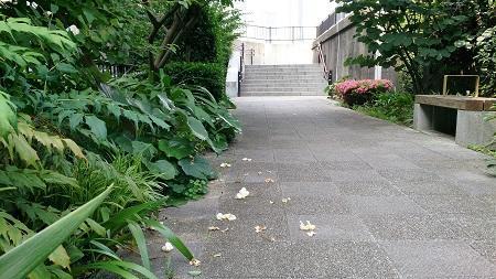 月島緑道.jpg