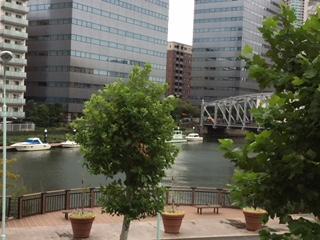 桜川屋上公園から亀島川を望む.jpeg