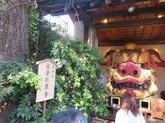 神社銀杏235.jpg