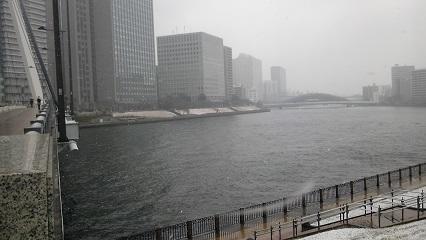 佃・石川島_雪_4.JPG