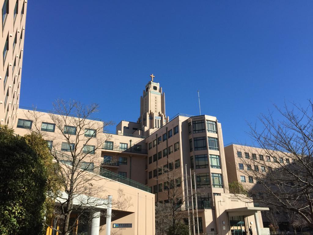 加 国際 大学 聖 路