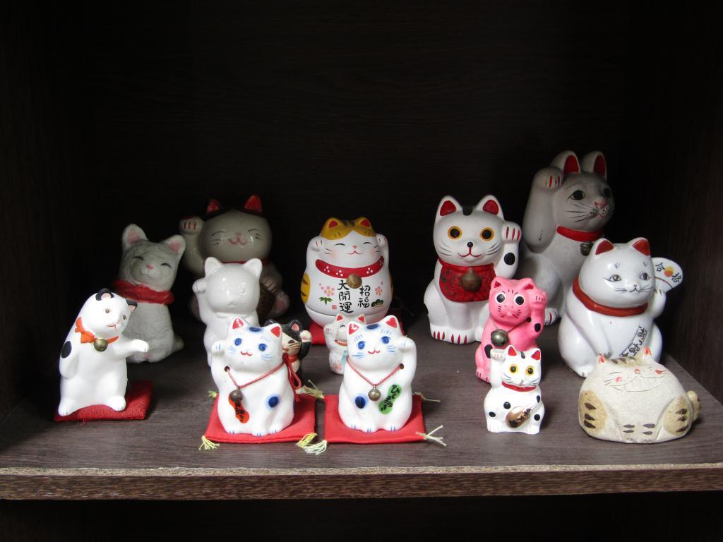 也在中央區!充滿個性的貓等