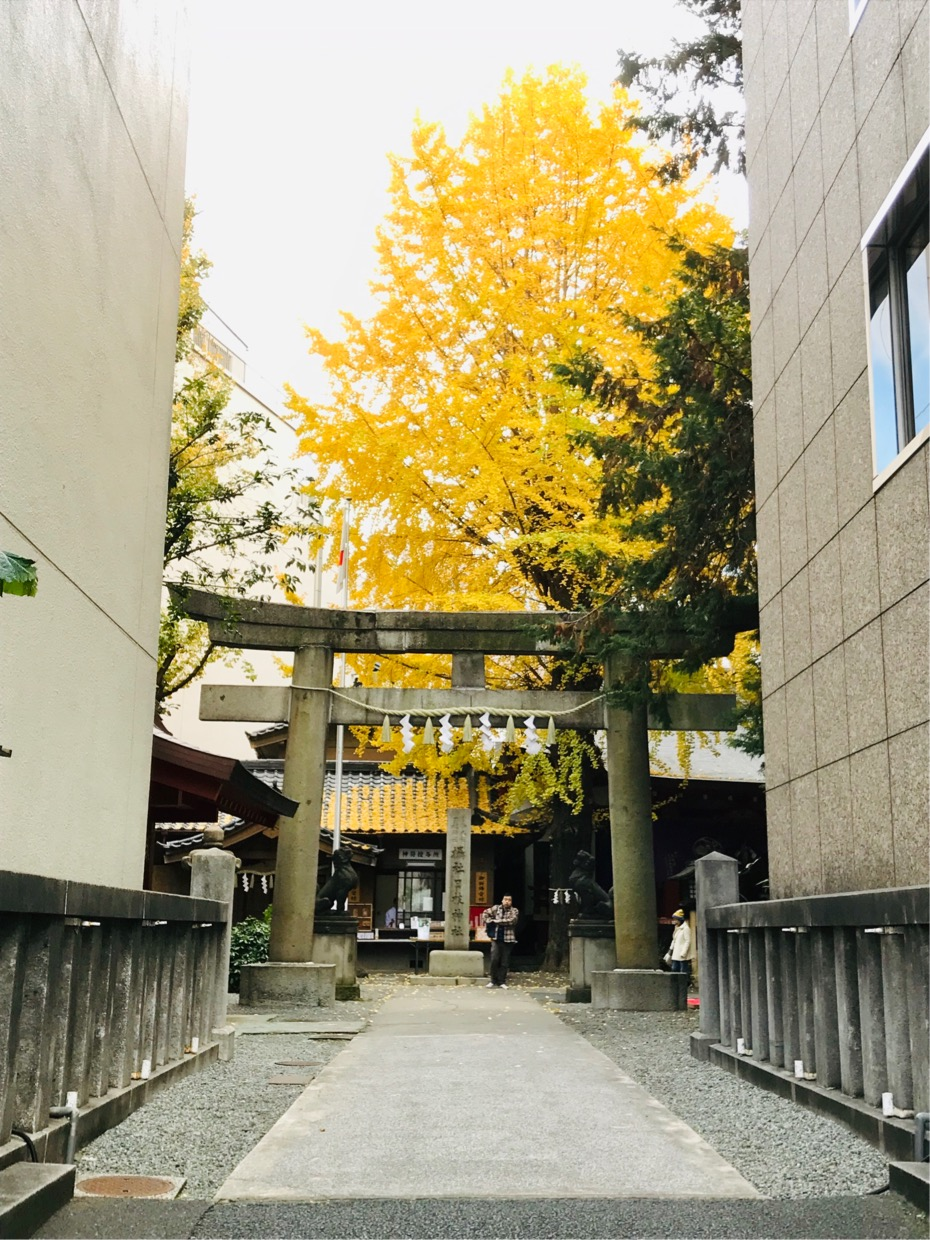 Does ... Sanno resting place for a portable shrine Nihonbashi Bridge Hie-jinja Shrine - 0 0 luck to hold its breath in gold of valley of building improve? Three selections of Shinto shrines where golden gingko nut wins
